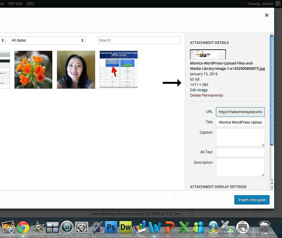 Monica WordPress Attachment Details Image